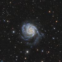 M1011Logo