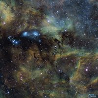 V6 Neb prox Cygne+neb+halosbleusStars+curveSvignette